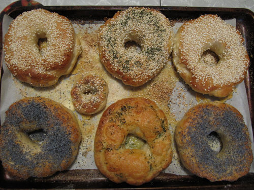 Bagels-Done