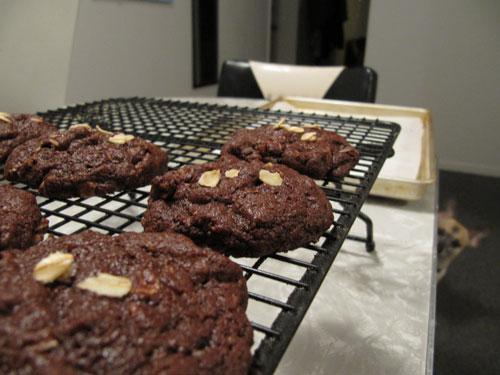 Chocolate-Oatmeal-+-Elliot-Peaking
