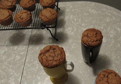 Mocha-Muffins---Cooling